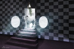 B. (joel gustof) Tags: k turkey d ak grafik kap ans eski harabe giri elektrik baar duvar oda dijital gri umut kapal ruhani parlak pasaj merdiven gelecek sembol kariyer boluk kapc mecaz baklk boyutlu zgr kurtulu zgrlk illstrasyon karanlk aydnlanma
