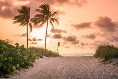 Beach Day (creativecapturez) Tags: bea sunrise paradise florida