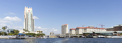 2016 Tampa Harbor Cruise (51) (maskirovka77) Tags: cruise tampa harbor us tour waterfront unitedstates florida dolphin pelican boattrip mansions funboat