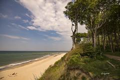 Gespensterwald  an der Ostsee (hph46) Tags: strand germany deutschland sony ngc wolken wald ostsee steilkste buche mecklenburgvorpommern nienhagen gespensterwald alpha7r