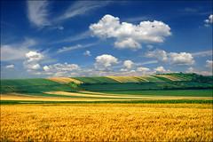 Sunny spring (Katarina 2353) Tags: landscape spring europe serbia fields vojvodina srbija pannonian beska katarinastefanovic katarina2353