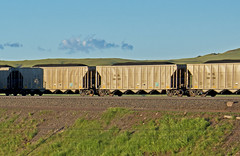 TSPX 100059 coal hopper-Hermosa, Wyoming. (Wheatking2011) Tags: tspx newmont mining dunphy nevada built their own power plant prb powder river basin union pacific west elko excess sold sierra company hermosa wyoming