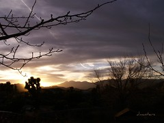 Awesome sunset in the HiDesert (dagutzyone ) Tags: joshuatree sunsets mojavedesert yuccavalley hidesert