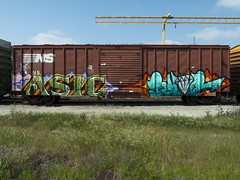 ASIC  RYOE (TRUE 2 DEATH) Tags: railroad train graffiti tag graf trains railcar etc boxcar railways railfan freight aub villains cbs freighttrain rollingstock asic benching freighttraingraffiti ryoe ricohgriv