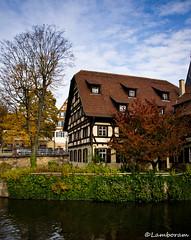 Classical German house (Lamboram) Tags: autumn fall colorsoflife sonydslr