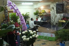 Flower shop (AntEater Theater) Tags: flowers taiwan streetphotography shops taipei players pianos flowershops pianoplayers