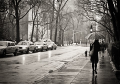 Slick With Promise -Rain - Greenwich Village - New York City (Vivienne Gucwa) Tags: nyc newyorkcity blackandwhite rain umbrella moody gothamist greyday lowermanhattan curbed gawker blackandwhitephotography newyorkcitytaxi wnyc cityrain nycphoto cityphoto rainnyc newyorkphoto nycphotography nyctaxicab nycblackandwhite manhattanrain viviennegucwa viviennegucwaphotography moodynyc rainnewyorkcity newyorkcityblackandwhitephotography noirnyc