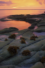 Sunset at the Tip of Borneo, Sabah, Malaysia (Macbrian Mun) Tags: sunset red seascape seaweed color nature weather rock landscape weed rocks sabah foreground