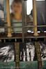 """[Spectacle] Mosaïque ou le Silence des Mains / Musée du textile Ventron / 29.06.09 • <a style=""""font-size:0.8em;"""" href=""""http://www.flickr.com/photos/30248136@N08/6869816393/"""" target=""""_blank"""">View on Flickr</a>"""