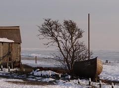 Laaksum (hoekiepoekie) Tags: wintertime ijsselmeerkust hoekiepoekie