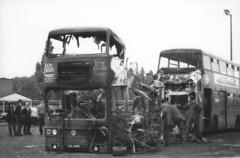 CUL 206V (markkirk85) Tags: park new bus london buses transport royal cul titan regional leyland t206 41980 206v cul206v