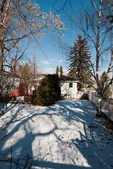 Backyard 2012-02-18 01 (SeanEsopenko) Tags: blue winter sky sunlight house calgary backyard nikon suburb 28 nikkor d300 1424