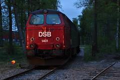 DSB Mz 1401, Ängelholm (S) (RobbyH83) Tags: