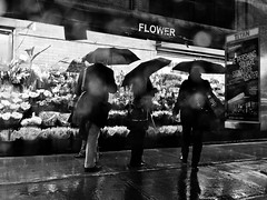 Flowers In The Rain (pennuja) Tags: street new york city nyc flowers blackandwhite bw rain umbrella manhattan candid stranger