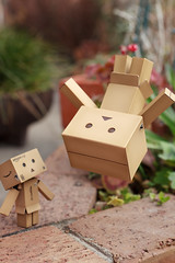 Parkour Danboard #3 (T.K Photo-Stream) Tags: amazon parkour revoltech danboard ダンボー パルクール