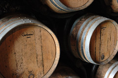 Weinfässer Loire -Frankreich