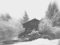Retour de l'hiver (JMVerco) Tags: winter bw snow art photomanipulation hiver digitalart neve neige inverno awardtree exoticimage blinkagain jmlinder