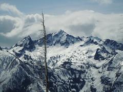 Mt. Cashmere