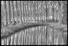 _AJC0053 (andyc0001) Tags: reflection canal belgium damme
