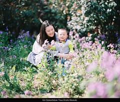 Jimi (Gin Gong) Tags: 120 film cherry asian al child shanghai pentax blossom kodak sakura epson medium format 28 portra 67ii 160 75mm aisa jobo v750 gtx970 atl500