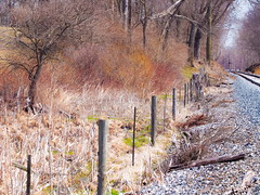 Early Spring Colors (Shannonsong) Tags: railroad fence landscape spring tracks wv fencefriday
