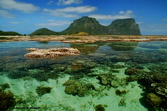 Coral Lagoon - Mt Lidgbird and Mt Gower, Lord Howe Island, Australia (Black Diamond Images) Tags: ocean water coral paradise australia lagoon caldera nsw aviary reef worldheritage coralreef lordhoweisland worldheritagearea exposedcoral volcanicmountains corallagoon mtgower mtlidgbird thelastparadise