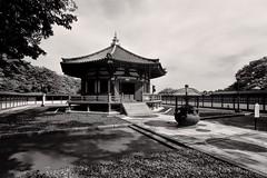 "Nikon 1 V3 test (Matthias Harbers) Tags: park blackandwhite bw test history japan photoshop temple 1 nikon buddhism historic v3 chiba dxo nikkor narita naritasan library"" shinshoji ""nikon temple"" 1"" ""photoshop ""topaz elements"" labs"" naritasanpark ""sutra 6713mm ""shinshoji v3"""