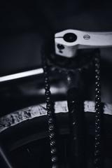 Roll all   #art #mtb #mountainbike #bike #bmx #Barcelona #Madrid #international #nikon #canon #leica #rolleiflex #hasselblad #portrait #iPhone #chupachups #street #happy #grain (adrintrej) Tags: barcelona madrid street leica portrait art bike rolleiflex canon happy nikon bmx grain mountainbike hasselblad international mtb chupachups iphone