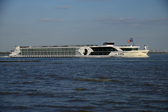 Lord Byron (larry_antwerp) Tags: netherlands ship nederland vessel schelde lordbyron  rivercruise schip  rilland