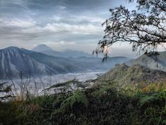 Another Side of Bromo (anggocc201) Tags: tourism nature indonesia mount gunung jawa timur bromo tengger pemandangan wisata eastjava pariwisata