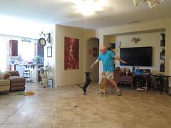 June 17, 2016 (327/365+3) (gaymay) Tags: california gay love clock dogs television painting floor desert palmsprings kitty livingroom inside selfie ozmo 365group