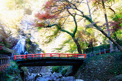 Meiji No Mori Minoh (Patrick Foto ;)) Tags: park travel autumn red mountain holiday tree fall tourism nature water beautiful beauty japan stone forest garden season landscape japanese tokyo waterfall leaf maple scenery kyoto colorful place background traditional landmark foliage national jp osaka kansai mino minoh minoo sakafu minooshi
