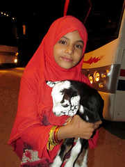 Egyptian Girl and her Lamb (shaire productions) Tags: egypt egyptian travel world image picture cairo city urban portrait girl cute lamb animal pet livestock red small smile smiling little lady young youth person people