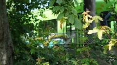 Graffiti (Honig&Teer) Tags: yard germany graffiti tram hannover urbanart vandalism aerosolart spraycanart stra strasenbahn honigteer