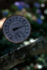 IMG_9466.CR2 (jalexartis) Tags: photography photo contest temperature challenge facebook photochallenge photoadaychallenge junechallenge jalexartis junephotochallenge temperatureprompt tthermometer