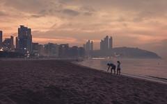 Busan Daybreak (Bunaro) Tags: morning travel sun beach landscape sand asia break cityscape south korea journey busan rise daybreak haeundae