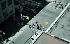 Walk Away (Dan Haug) Tags: downtown ottawa workers lunchtime xpro2 xf35mmf14r fujifilm classicchrome thebox fromabove bankstreet tilt pedestrians explore explored