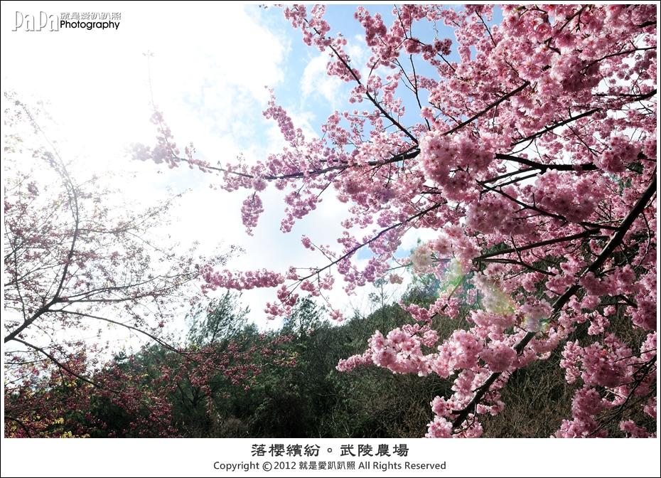 Wuling_0012