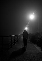 Shadows in the Fog (Colin Freeman Photography) Tags: light weather fog river model nikon path rail birkenhead hedge wirral d90