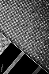 Abstract .. (⌯ ̟՝˻ п̵м̱ọ̯͡໐яྀα ˺ ໋, ৩՞) Tags: bw white abstract black canon gray doha qatar عربية t3i d600 qtr مجرد قطر 600d الدوحه ameera اسود د q6r أميرة كانون ابيض amoora اميرة اموره تجريد امورة دي اميره التجريد احادي أمورة أميره أموره ٦٠٠ رماديqtr دي٦٠٠