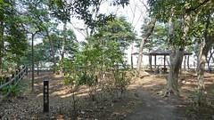 熊野神社市民の森(権現山広場)(Gongenyama Square at Kumano Shrine Community Woods)