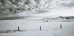 Minimalist View Black Hills Winter (LostOzarkRambler) Tags: ranch winter blackandwhite snow blackhills fence wyoming minimalism fenceline minimalistview