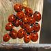 Ladybirds NottsWT (cpt Matt Berry)