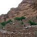 Dogon%2520Country%252C%2520Mali%2520130
