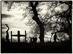 Oh, Whistle, And I'll Come to You, My Lad (Feldore) Tags: trees ireland white black tree castle silhouette stone standing james scary sinister branches ghost spooky story lad demon demonic ward northern mchugh whistle strangford feldore