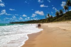 Praia de Coqueirinho (MURUCUTU) Tags: praia beach brasil clouds photography sand waves bluesky tourist palmtrees joopessoa fotografia litoral sul paraba coqueirinho murucutu