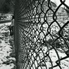 .what we see depends mainly on what we look for. (just.K) Tags: snow wall fence chainlink justk