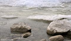 Kruiend ijs Hindeloopen (Ankie Rusticus, I'm not much here) Tags: winter cold ice friesland hindeloopen 2012 ijs koud kruiendijs
