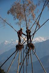 Locals Making a swing on a Multi sport treking Mountain biking rafting kayaking trip in Nepal