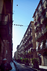 Pigeons 2 (applewei) Tags: barcelona street travel sky birds spain nikon wei pigoens applewei d5100